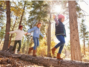 Elternbrief - Kampfsport - Kinder - Balance
