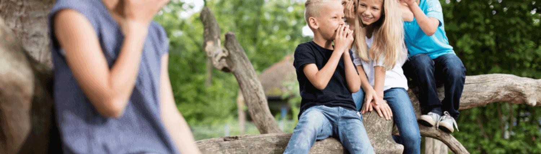 Stell Dich gegen Mobbing - Selbstverteidigung - Kampfsport - Kampfkunst - Kinder & Jugendliche - Kiel